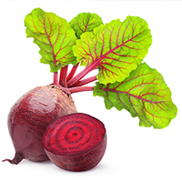 Food-Highlight-Beets